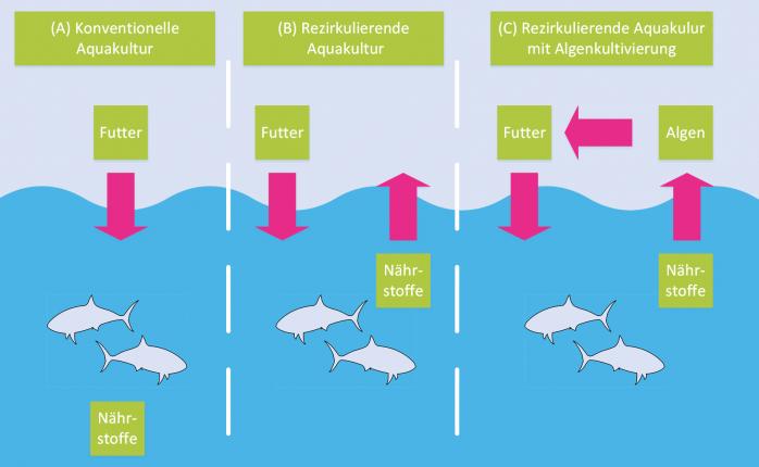 Aquakultur_Vegleich