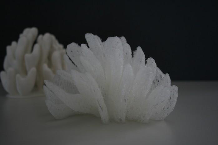 Erste gedruckte Koralle